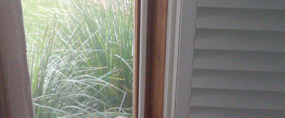 Window flyscreen